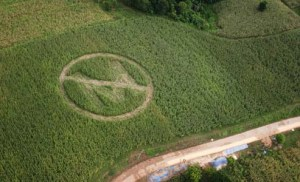 No monsanto crop circle